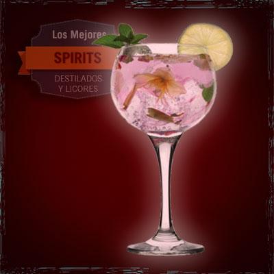 gin tónic azahar