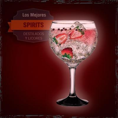 gin tónic fresas