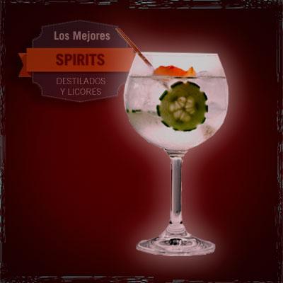 gin tónic pepino